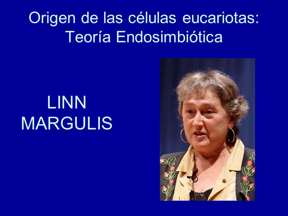 Origen de las células eucariotas: Teoría Endosimbiótica LINN MARGULIS