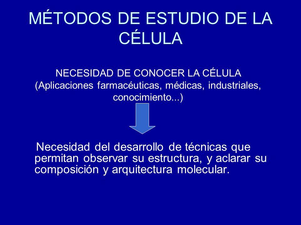 MÉTODOS DE ESTUDIO DE LA CÉLULA Necesidad del desarrollo de técnicas que permitan observar su estructura, y aclarar su composición y arquitectura mole
