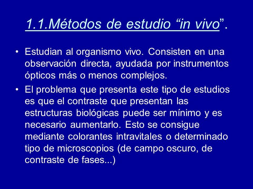 1.1.Métodos de estudio in vivo. Estudian al organismo vivo. Consisten en una observación directa, ayudada por instrumentos ópticos más o menos complej