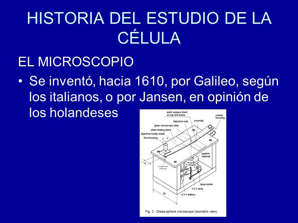 HISTORIA DEL ESTUDIO DE LA CÉLULA ROBERT HOOKE