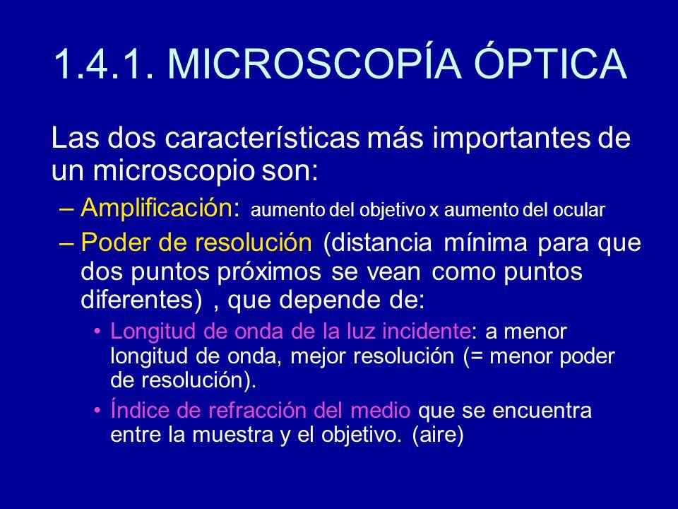 Las dos características más importantes de un microscopio son: –Amplificación: aumento del objetivo x aumento del ocular –Poder de resolución (distanc