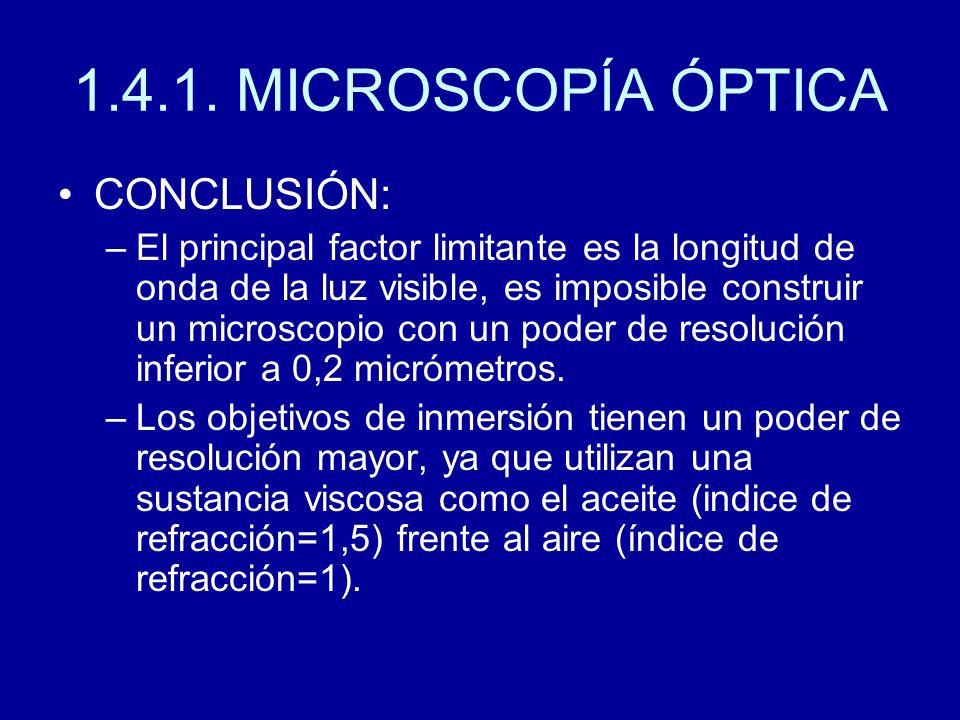 1.4.1. MICROSCOPÍA ÓPTICA CONCLUSIÓN: –El principal factor limitante es la longitud de onda de la luz visible, es imposible construir un microscopio c