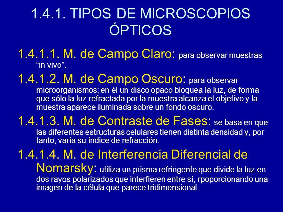 1.4.1. TIPOS DE MICROSCOPIOS ÓPTICOS 1.4.1.1. M. de Campo Claro: para observar muestras in vivo. 1.4.1.2. M. de Campo Oscuro: para observar microorgan