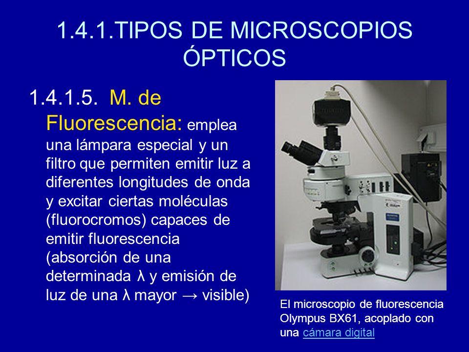 1.4.1.TIPOS DE MICROSCOPIOS ÓPTICOS 1.4.1.5. M. de Fluorescencia: emplea una lámpara especial y un filtro que permiten emitir luz a diferentes longitu