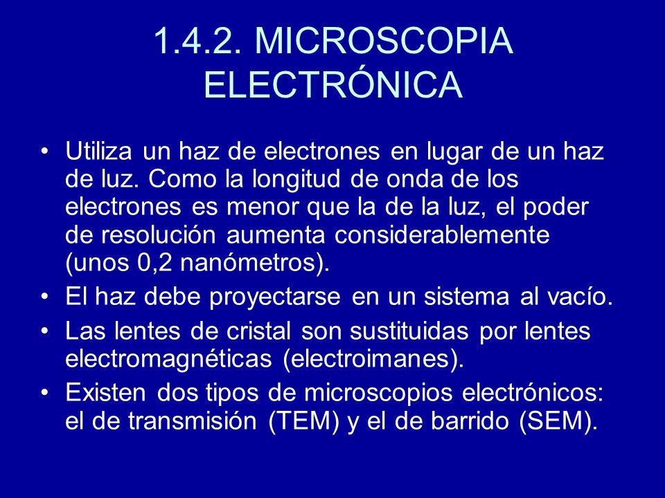1.4.2. MICROSCOPIA ELECTRÓNICA Utiliza un haz de electrones en lugar de un haz de luz. Como la longitud de onda de los electrones es menor que la de l