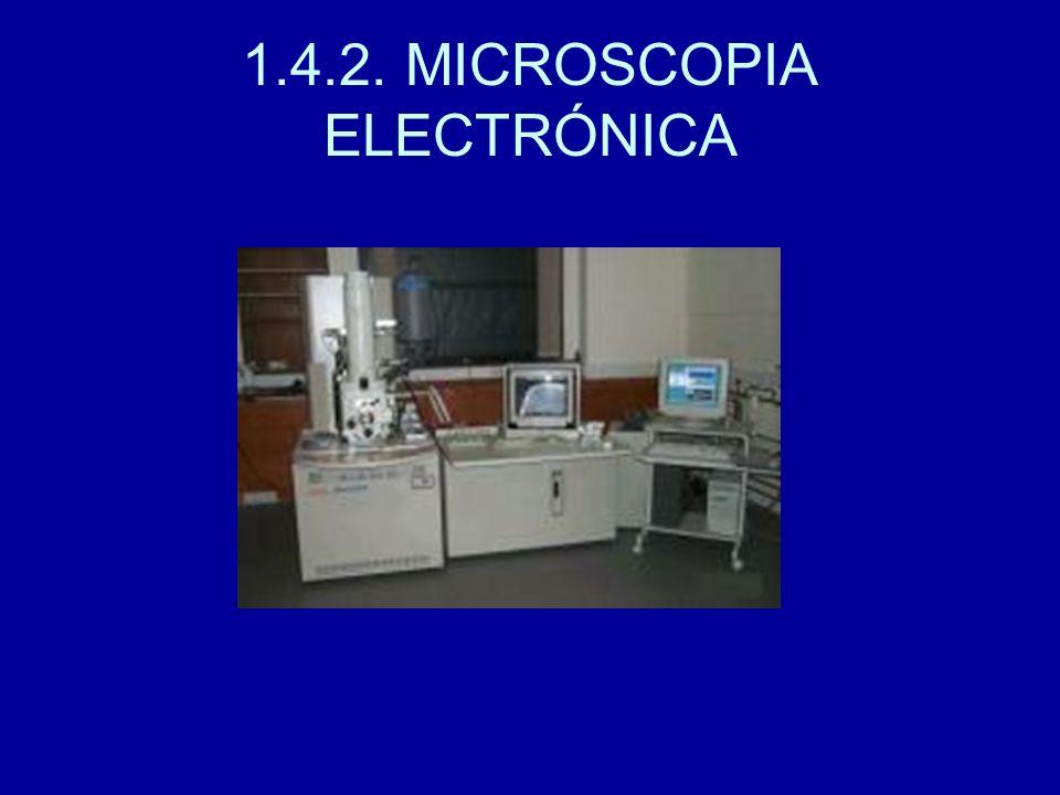 1.4.2. MICROSCOPIA ELECTRÓNICA