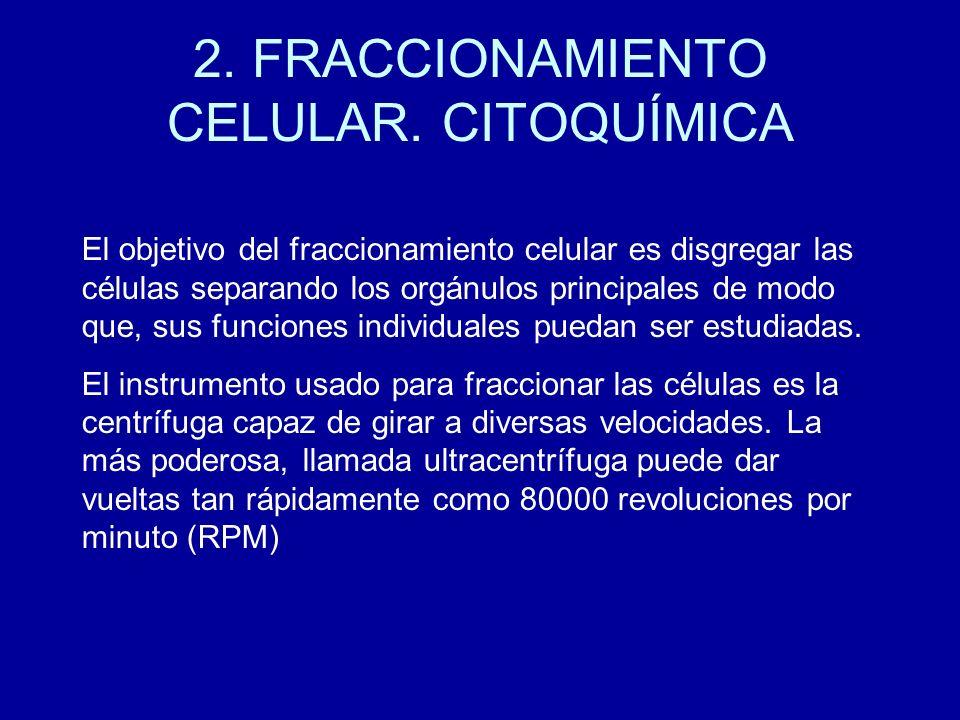 2. FRACCIONAMIENTO CELULAR. CITOQUÍMICA El objetivo del fraccionamiento celular es disgregar las células separando los orgánulos principales de modo q