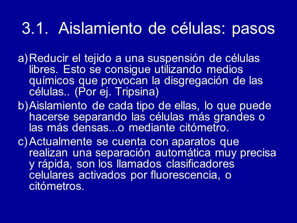3.1. Aislamiento de células: pasos a)Reducir el tejido a una suspensión de células libres. Esto se consigue utilizando medios químicos que provocan la