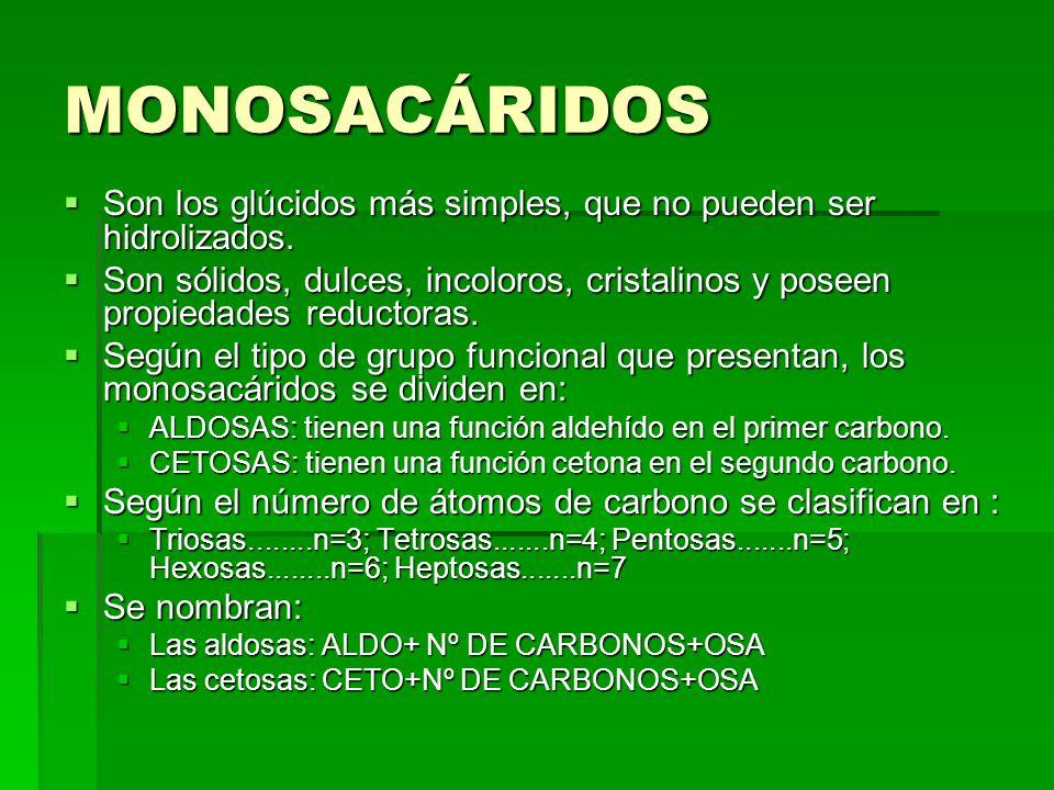 MONOSACÁRIDOS Son los glúcidos más simples, que no pueden ser hidrolizados. Son los glúcidos más simples, que no pueden ser hidrolizados. Son sólidos,