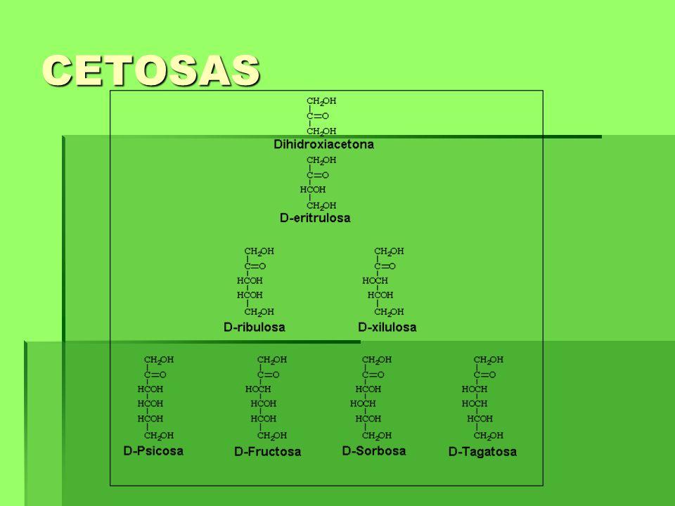 CETOSAS