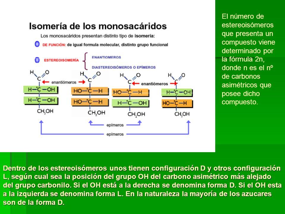 Dentro de los estereoisómeros unos tienen configuración D y otros configuración L, según cual sea la posición del grupo OH del carbono asimétrico más