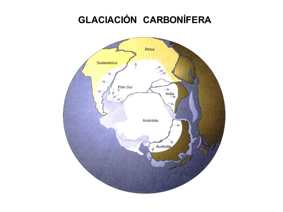 CAMBIOS DE LA TEMPERATURA DURANTE EL CUATERNARIO Durante el Cuaternario las glaciaciones se explican como una consecuencia de los ciclos de Milancovitch