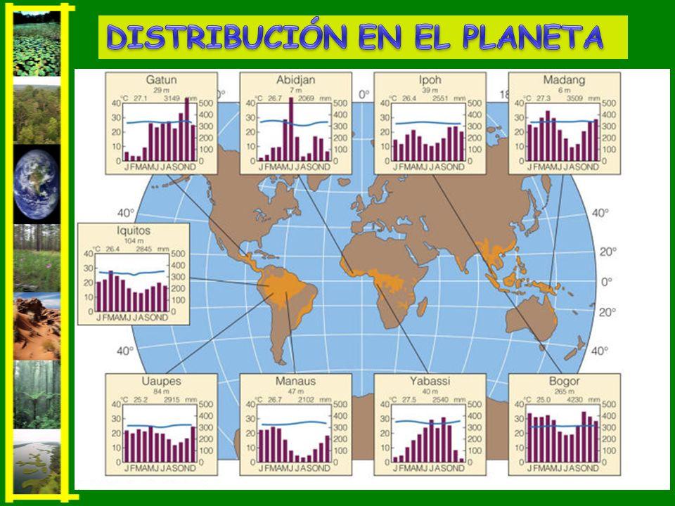 Clima: escasas lluvias y altas temperaturas.Clima: escasas lluvias y altas temperaturas.