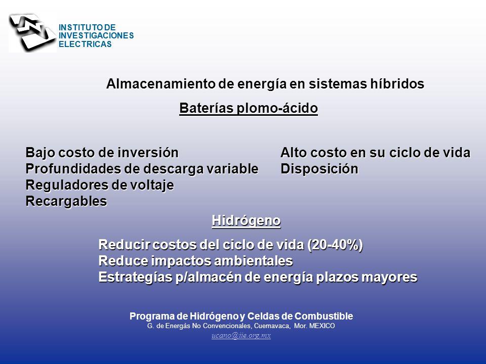 INSTITUTO DE INVESTIGACIONES ELECTRICAS Celda MCFC, a gas de un relleno sanitario...otras fuentes renovables