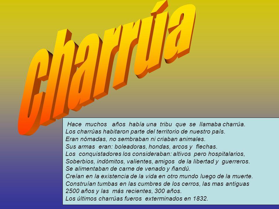Los charrúa se ubicaban por las costas en el río Uruguay y río de la plata.Por que Las mujeres se quedaban en los ríos por el agua, los hombres se Iván a casar animales por ejemplo: mulitas, tatué etc.