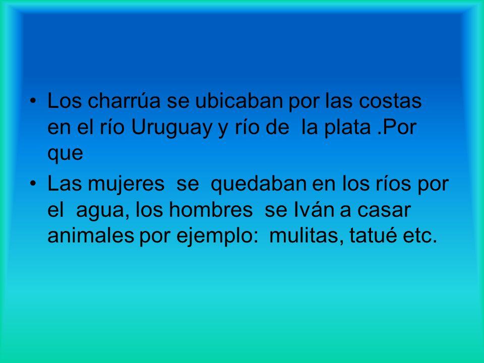 Soy un charrúa y me ubico en las costa del río Uruguay y el río de la plata Somos muy Avilés nos escondemos por las selvas