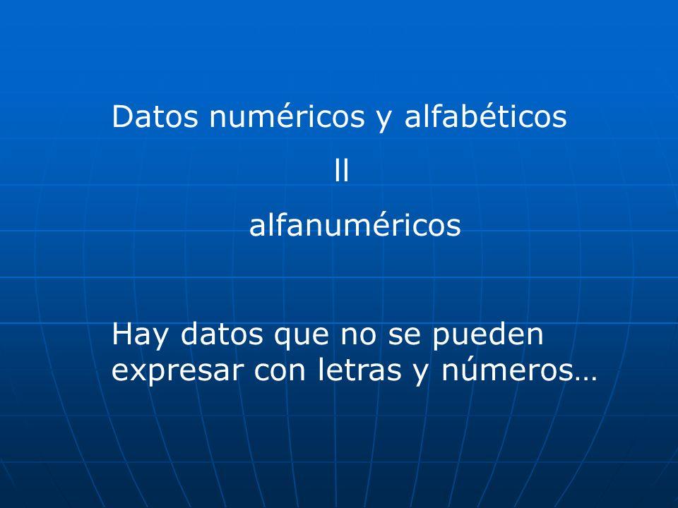 Datos numéricos y alfabéticos ll alfanuméricos Hay datos que no se pueden expresar con letras y números…