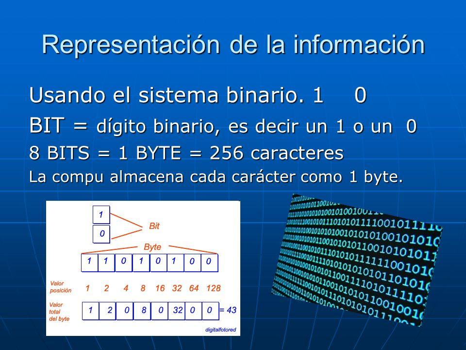 Información se maneja con instrucciones y datos.