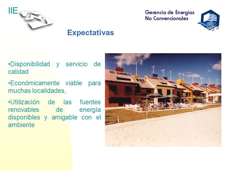 IIE Expectativas Disponibilidad y servicio de calidad Económicamente viable para muchas localidades, Utilización de las fuentes renovables de energía