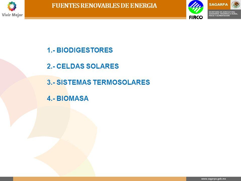 FUENTES RENOVABLES DE ENERGIA 1.- BIODIGESTORES 2.- CELDAS SOLARES 3.- SISTEMAS TERMOSOLARES 4.- BIOMASA