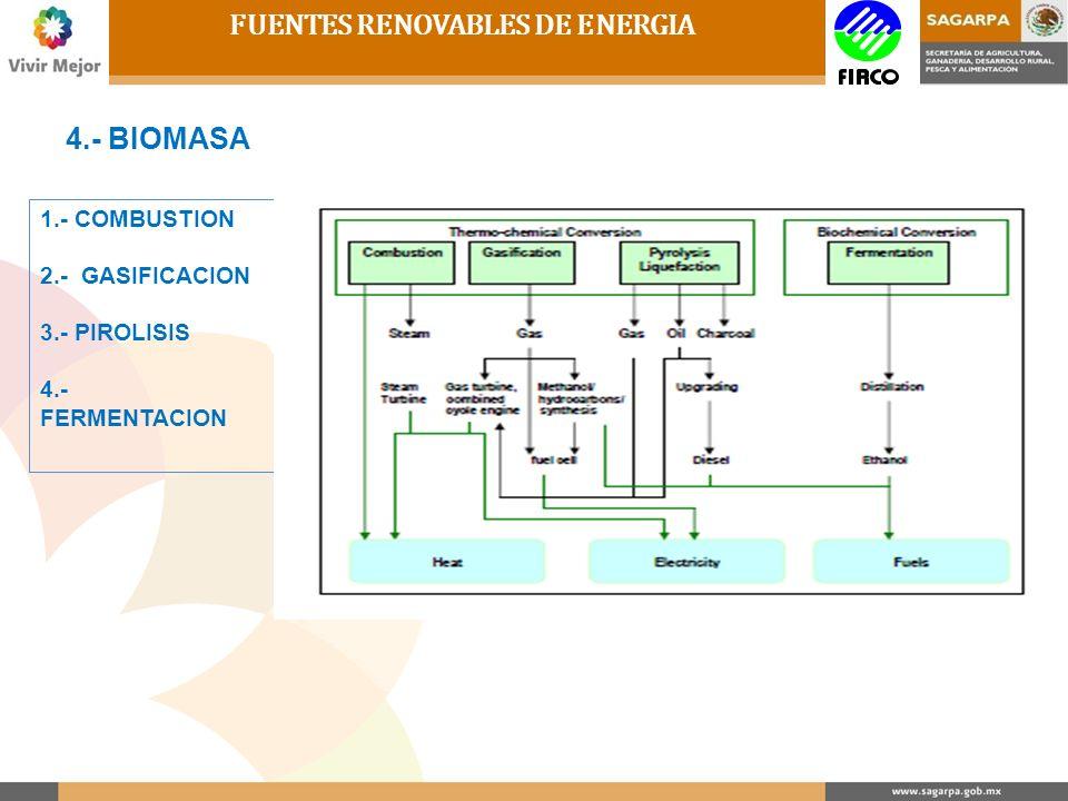 FUENTES RENOVABLES DE ENERGIA 4.- BIOMASA 1.- COMBUSTION 2.- GASIFICACION 3.- PIROLISIS 4.- FERMENTACION