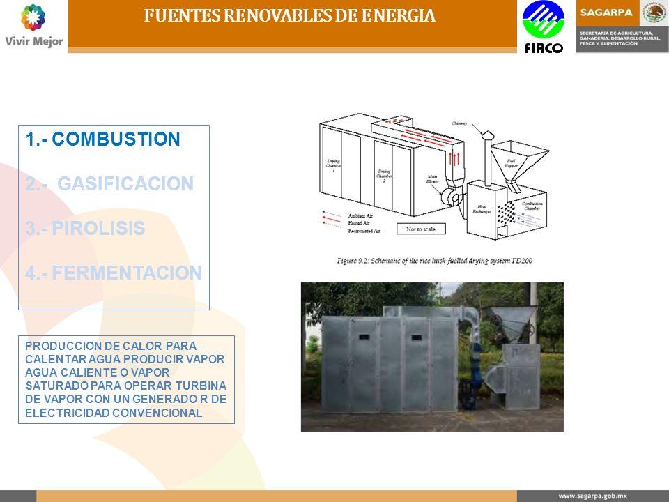 FUENTES RENOVABLES DE ENERGIA 1.- COMBUSTION 2.- GASIFICACION 3.- PIROLISIS 4.- FERMENTACION PRODUCCION DE CALOR PARA CALENTAR AGUA PRODUCIR VAPOR AGU