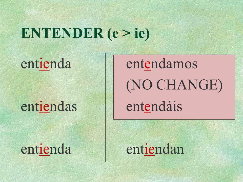 ENTENDER (e > ie) entienda entiendas entienda entendamos (NO CHANGE) entendáis entiendan