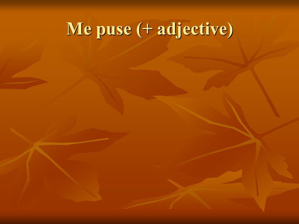 Me puse (+ adjective)