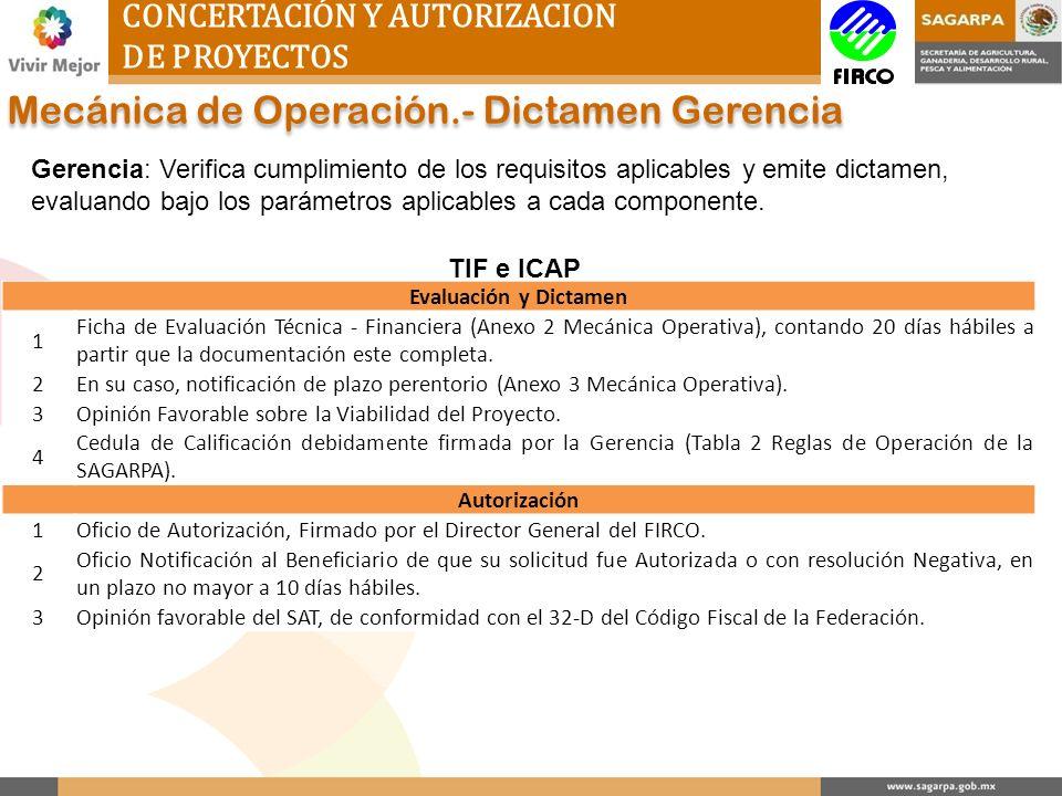 CONCERTACIÓN Y AUTORIZACION DE PROYECTOS Mecánica de Operación.- Dictamen Gerencia Gerencia: Verifica cumplimiento de los requisitos aplicables y emit