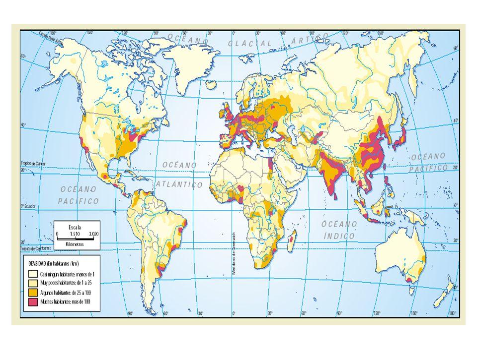 Tasas de alfabetismo, por sexo, 2000 Porcentaje Adultos alfabetos, por región Fuente: Instituto de Estadísticas de UNESCO (www.uis.unesco.org).
