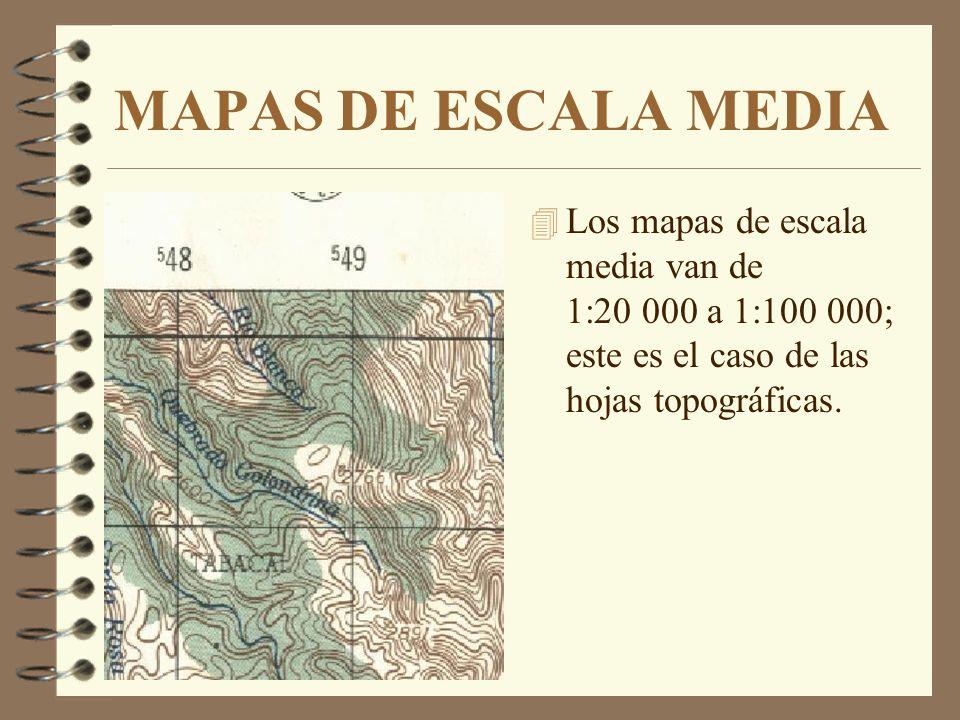 MAPAS DE ESCALA GRANDE 4 Los mapas de gran escala van de 1:1 000 a 1:20 000; este es el caso de los planos catastrales de una casa, iglesia, escuela,