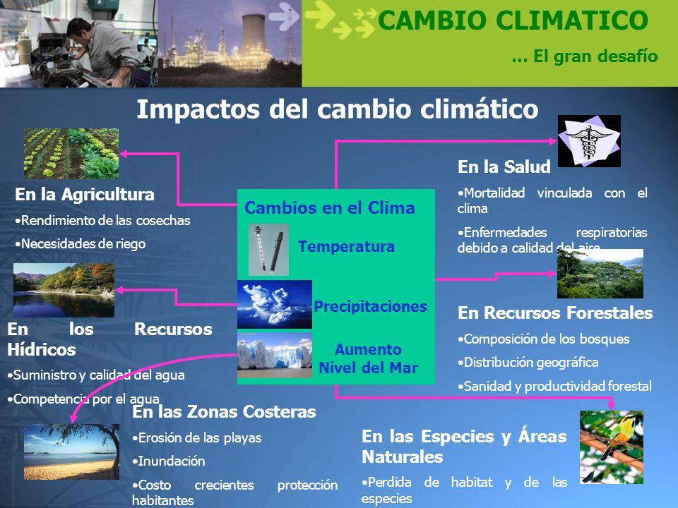CAMBIO CLIMATICO … El gran desafío En las Especies y Áreas Naturales Perdida de habitat y de las especies En los Recursos Hídricos Suministro y calida