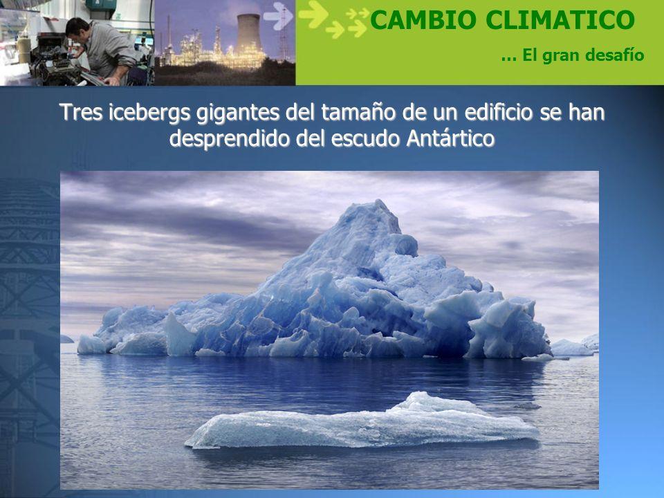 CAMBIO CLIMATICO … El gran desafío Tres icebergs gigantes del tamaño de un edificio se han desprendido del escudo Antártico