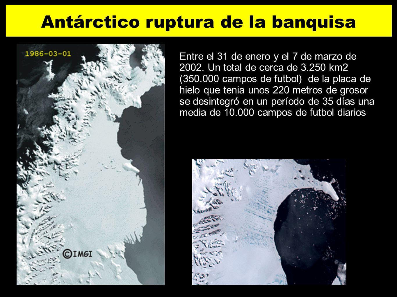 19 Antárctico ruptura de la banquisa Entre el 31 de enero y el 7 de marzo de 2002. Un total de cerca de 3.250 km2 (350.000 campos de futbol) de la pla