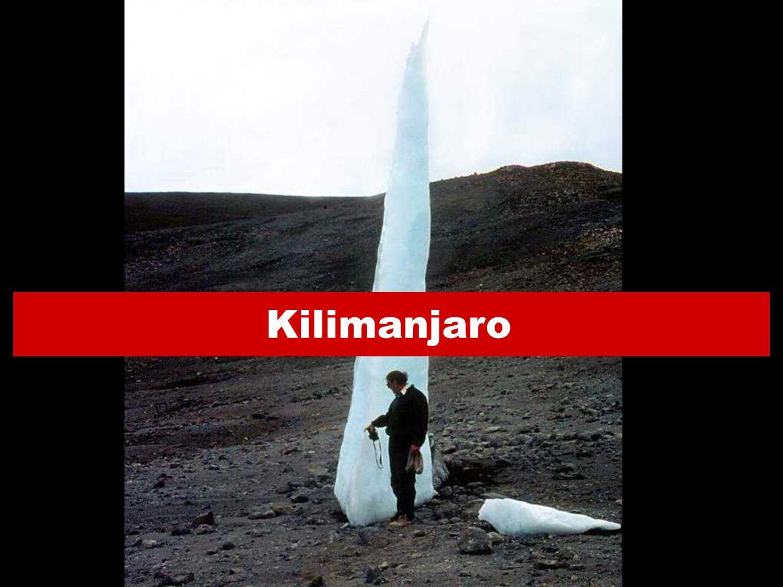 29 Kilimanjaro