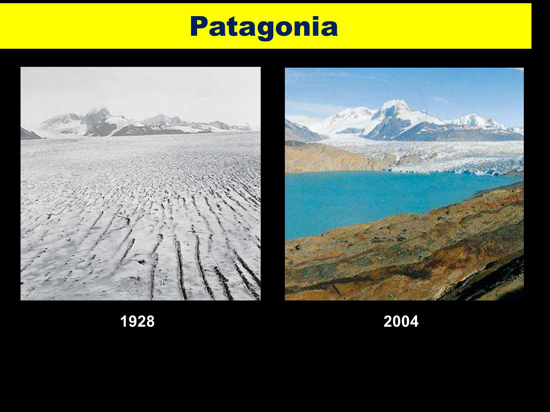 31 19282004 Patagonia