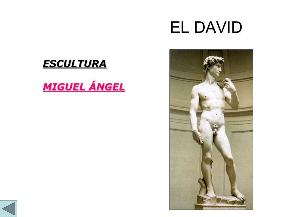 EL DAVID ESCULTURA MIGUEL ÁNGEL