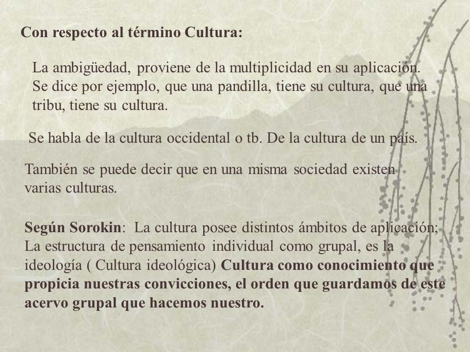 Con respecto al término Cultura: La ambigüedad, proviene de la multiplicidad en su aplicación. Se dice por ejemplo, que una pandilla, tiene su cultura