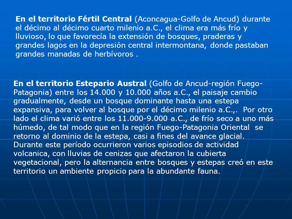 En el territorio Fértil Central (Aconcagua-Golfo de Ancud) durante el décimo al décimo cuarto milenio a.C., el clima era más frío y lluvioso, lo que f