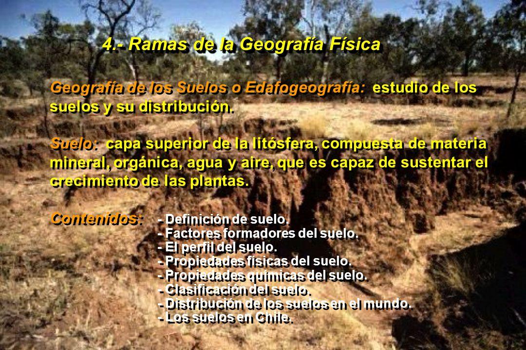 4.- Ramas de la Geografía Física Geografía de los Suelos o Edafogeografía: estudio de los suelos y su distribución. Suelo: capa superior de la litósfe