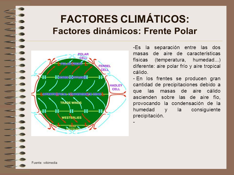 FACTORES CLIMÁTICOS: Factores dinámicos: Frente Polar -Es la separación entre las dos masas de aire de características físicas (temperatura, humedad...) diferente: aire polar frío y aire tropical cálido.