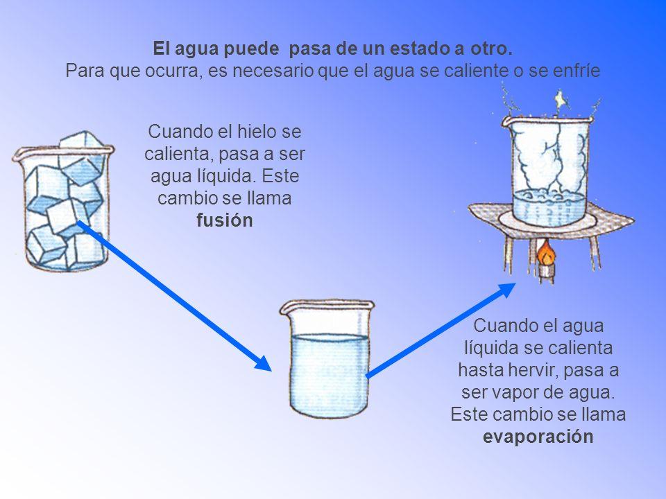 El agua puede pasa de un estado a otro. Para que ocurra, es necesario que el agua se caliente o se enfríe Cuando el hielo se calienta, pasa a ser agua