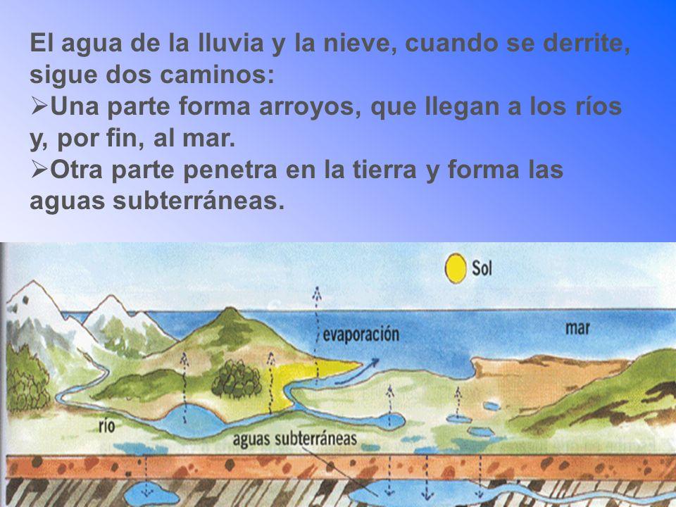 El agua de la lluvia y la nieve, cuando se derrite, sigue dos caminos: Una parte forma arroyos, que llegan a los ríos y, por fin, al mar. Otra parte p