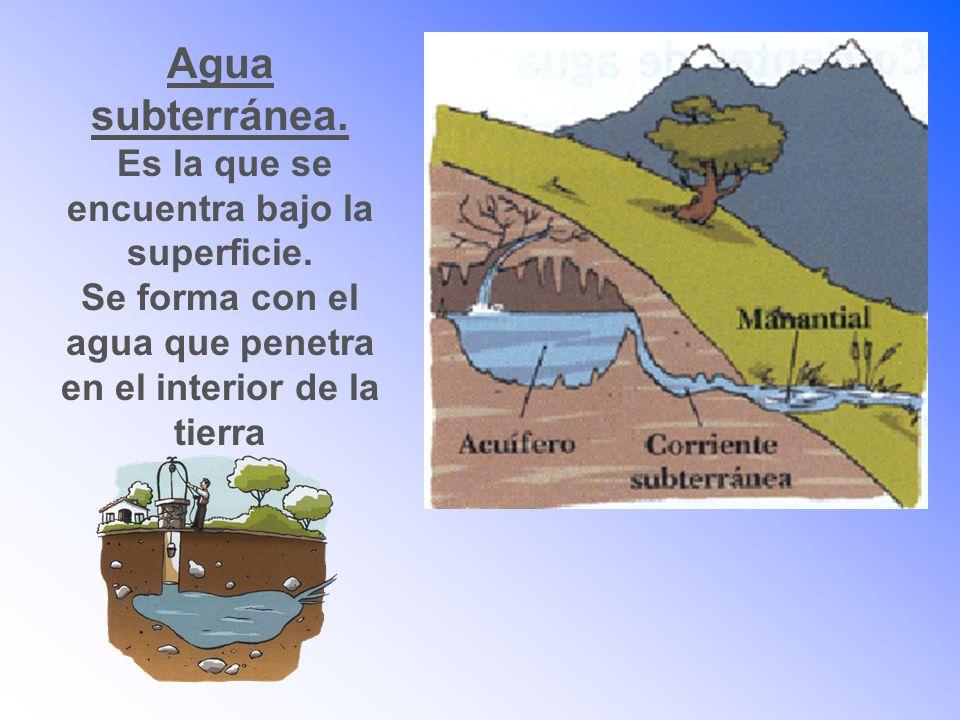 Agua subterránea. Es la que se encuentra bajo la superficie. Se forma con el agua que penetra en el interior de la tierra