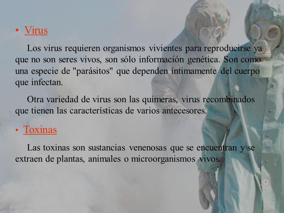 Virus Los virus requieren organismos vivientes para reproducirse ya que no son seres vivos, son sólo información genética. Son como una especie de