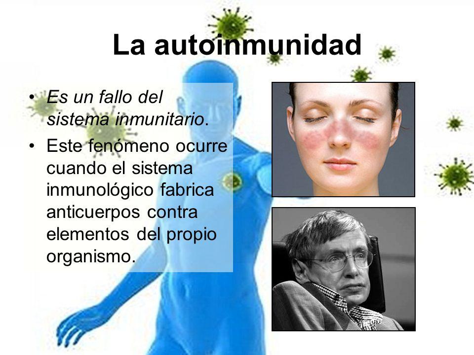 La autoinmunidad Es un fallo del sistema inmunitario. Este fenómeno ocurre cuando el sistema inmunológico fabrica anticuerpos contra elementos del pro