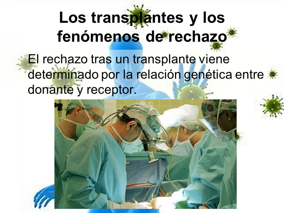 Los transplantes y los fenómenos de rechazo El rechazo tras un transplante viene determinado por la relación genética entre donante y receptor.