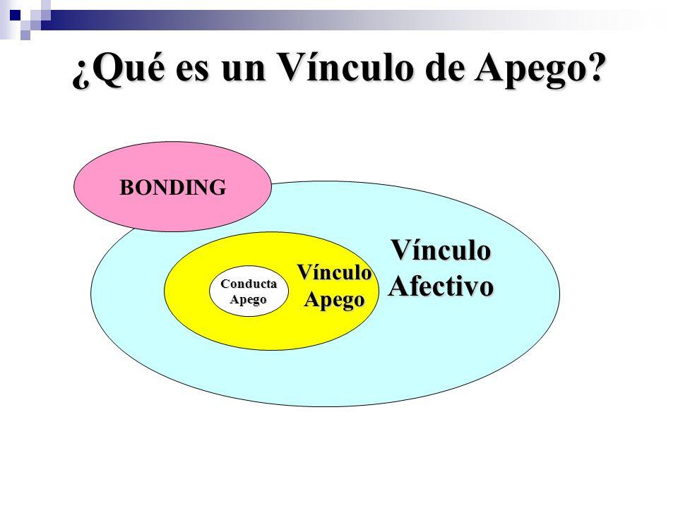Condiciones básicas para la formación de un Vínculo de Apego 1.La relación afectiva debe ser duradera en el tiempo (duración de años, de lo contrario no se fortalece el apego).