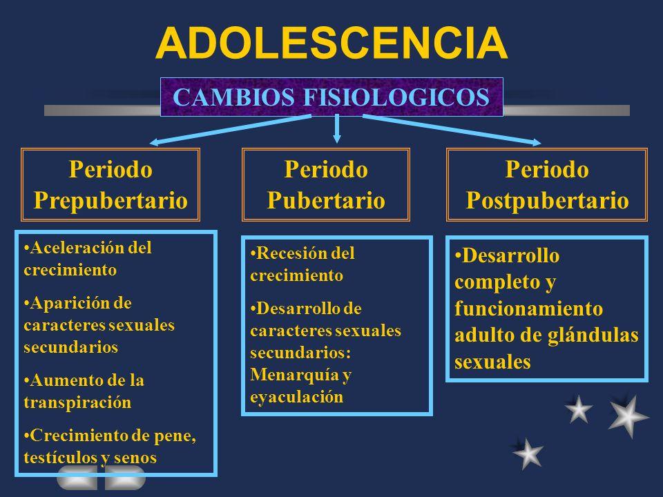 ADOLESCENCIA EL PROCESO DE CAMBIO El cambio fisiológico. El cambio cognitivo. El cambio afectivo/sexual EL PROCESO DE CAMBIO El cambio fisiológico. El