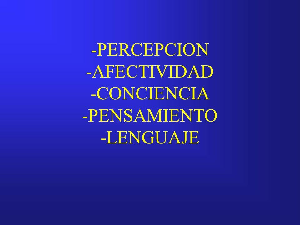 PERCEPCION DEFINICION: Proceso mediante el cual es posible adquirir conciencia de lo que se presenta a través de los órganos sensoriales.